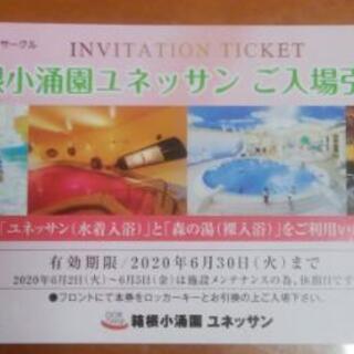 箱根小涌園ユネッサン ご入場引換券1枚。