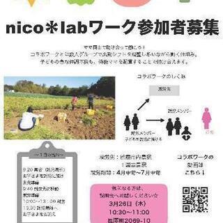 nico*lab参加者募集!!