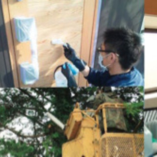 立木伐採・遺品整理【地元密着型便利屋サービス】