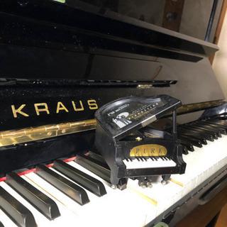 ピアノを独学で学びたい方に、基本と練習の仕方を教えます。