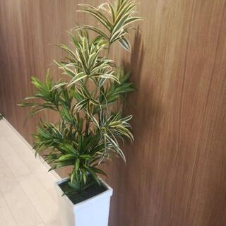 観葉植物(人工)