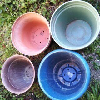 植木鉢 大きめ