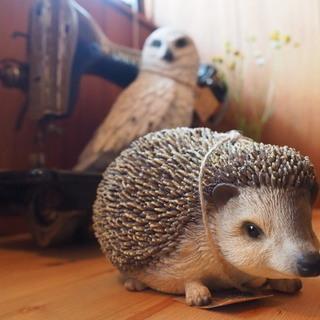 【新品/発送OK】Hedgehog ハリネズミ 自宅、お店の素敵...