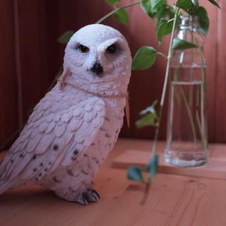 【新品/発送OK】 White Owl 白 フクロウ 自宅、お店...