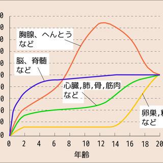 5/26更新【南城市限定!】親子で受講OK!単発水泳レッスン(す...