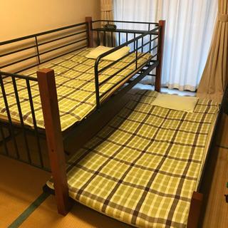 dinos 2段 ベッド