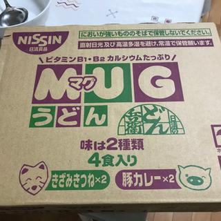 マグうどん 12パック (1箱)