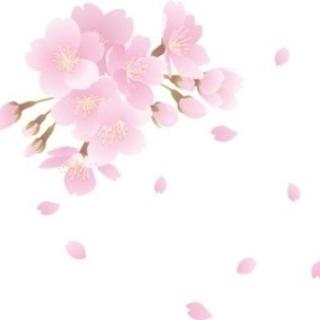 【中止】(初1人参加女性先着3名まで0円‼️)ゆったりと桜を楽し...