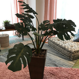 フェイク観葉植物