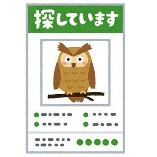 ■内職■ 在宅作業 ¥5~ 完全成果報酬制 真面目な方のみ! ■...