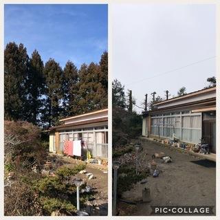 チェンソー有資格者 伐採・草刈り 処分までワンストップ  - 剪定/造園