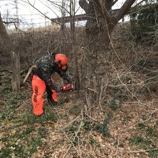 チェンソー有資格者 伐採・草刈り 処分までワンストップ  − 宮城県