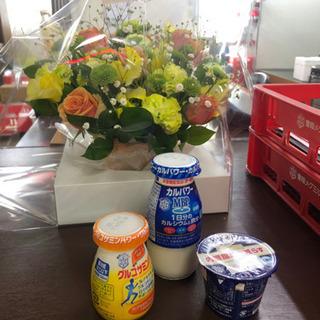 牛乳サンプルの無料配布