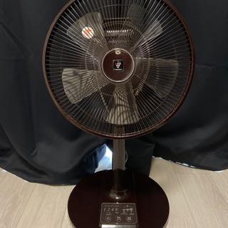 SHARP 扇風機 PJ-B3CLL