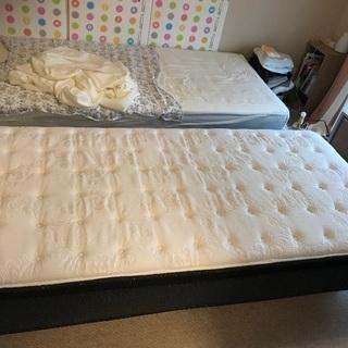 ニトリ  シングルベッド+マットレス 1セット