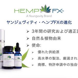 【安心の国内製造品】身体の免疫力を高めるCBDヘンプオイル④ - コスメ/ヘルスケア