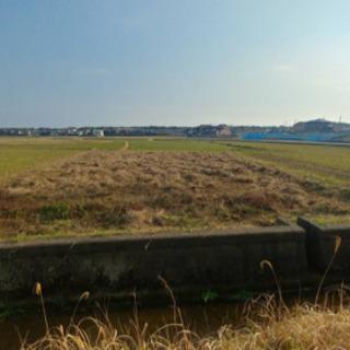 日高郡美浜町の長閑な場所に広く安価な土地出ました!