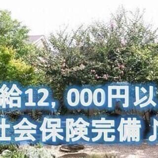 【★給12,000円以上★】週2日~OK♪社会保険完備★未経験...
