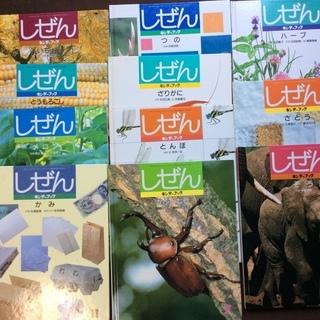 【中古】キンダーブック「しぜん」11冊セット千円