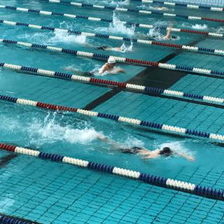 【水泳教室】小学校教諭目指してる方