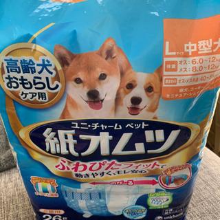 犬用の紙オムツ L   お値下げ