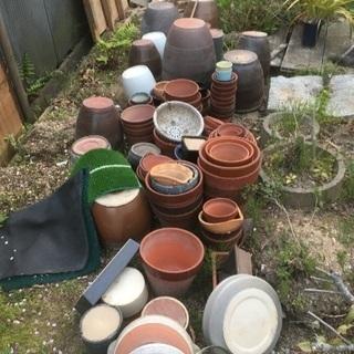 植木鉢 メダカ鉢