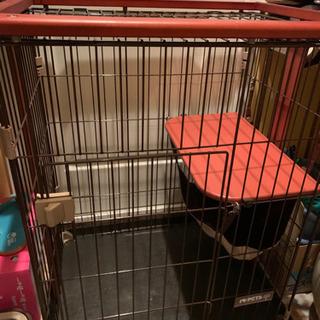 猫ケージ ウッドワンサイクル 二段タイプ
