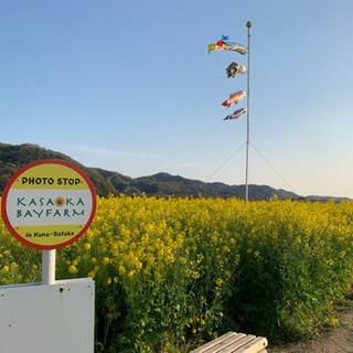 岡山LINEグルチャメンバー大募集(  ー̀֊ー́ )✧現在50名
