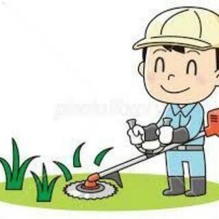 草刈り、伐採 当社におまかせください