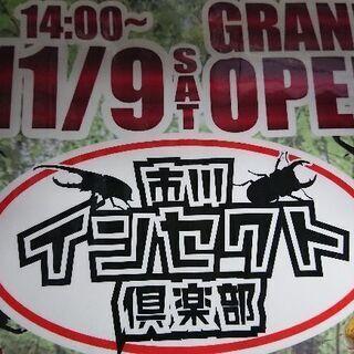 カブト虫、クワガタ虫【4っの管理温度スペース 】飼育レンタルスペ...