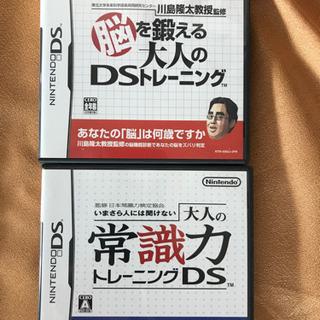 ニンテンドーD S ソフト2本