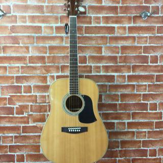 アリアウェスタンギター AW-20N  新品在庫