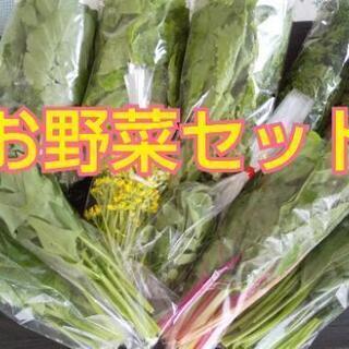 お野菜成長中の為しばらくお休みします【よねベジ】の画像