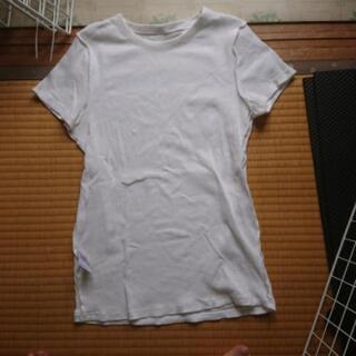 ユニクロ 白Tシャツ 2枚   あげます