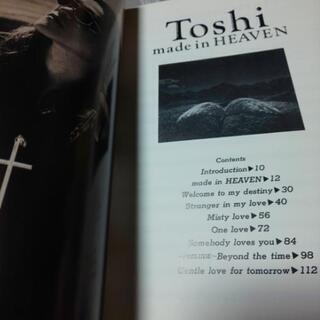 Toshi/made in HEAVEN - 楽器