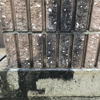 お試し5分無料!ブロック塀、コンクリートの藻、苔を家庭用高圧洗浄...