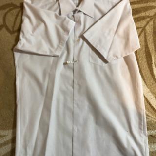 男児ワイシャツ 半袖 パート2