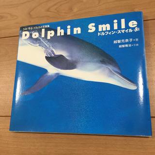 値下げ 美品 ドルフィン・スマイル うみ・そら・イルカの写真集