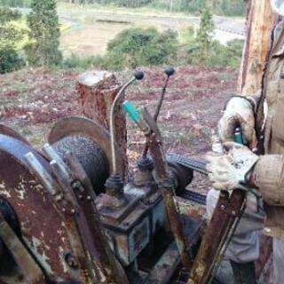 現役林業者が伐採、草刈りします。