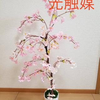 フェイクグリーン 桜 光触媒付