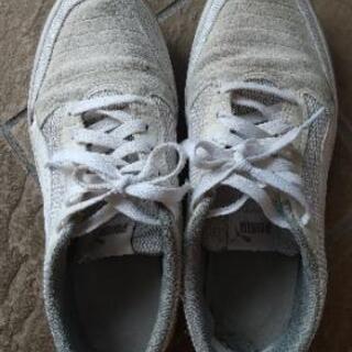 スニーカー、革靴各種
