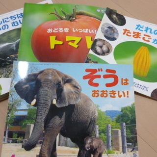 年長さん向けの配布本(12冊)