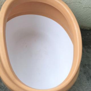 猫用 トイレ - 那覇市
