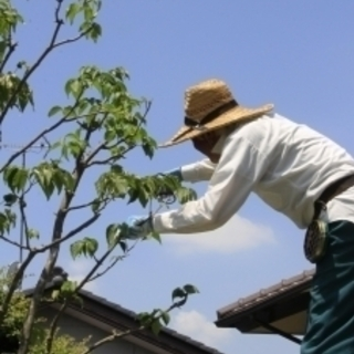 庭木の剪定、伐採、消毒、草刈り、植栽、空家の管理など造園にまつわ...