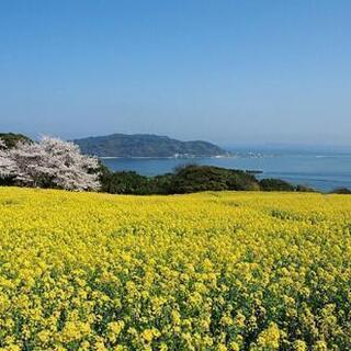 『淡路島へ遊びに行きませんか😊』