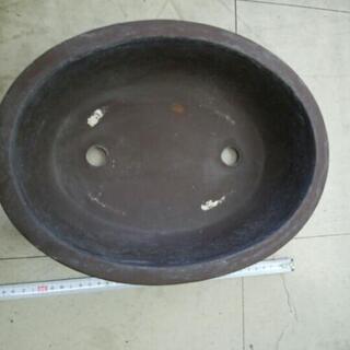 トコナメ植木鉢だ円形!