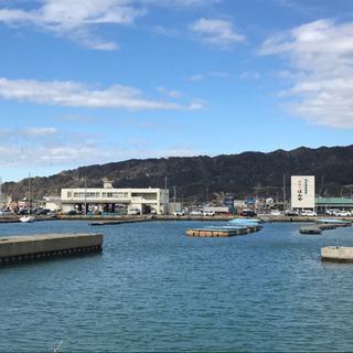 【東京湾の操船練習】ボートの操船指導・ナビゲーター