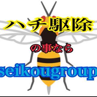 蜂駆除、スズメバチ駆除、オオスズメバチ駆除