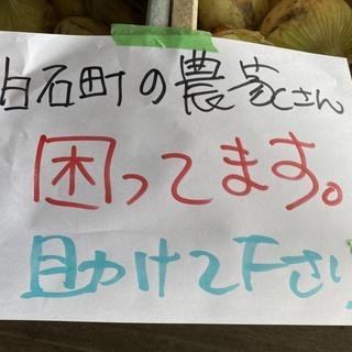 【完売しました】白石町の農家の人が困ってます!コロナで廃棄寸前!玉ねぎ1個10円!買いに来て下さい~(*^^*) - 食品