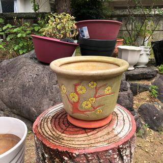 陶器プランター花柄